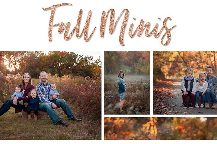 Fall Mini Sessions   Arlington Heights IL Family Photographer