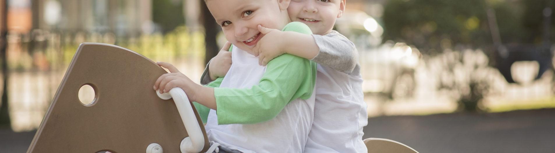 The Bolsinger Boys | Arlington Heights Illinois Family Photographer